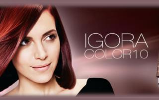 Salon Hair Colour image
