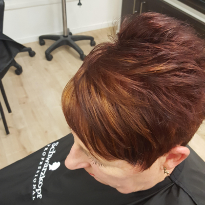 Short Coloured Hair Style image